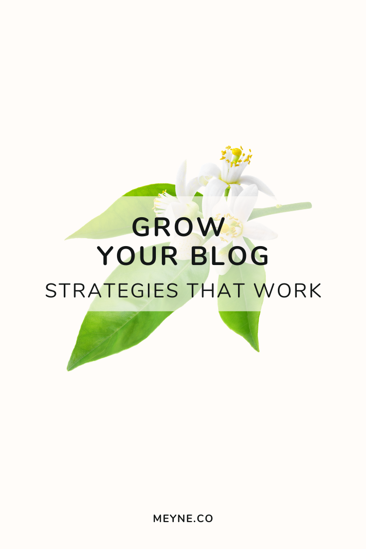 Grow your blog - Strategies that work